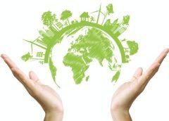 Consejos para un viajero eco-friendly y disminuir tu huella ambiental…
