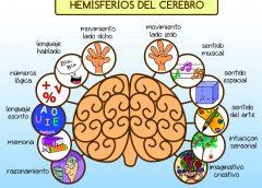 Una prueba imposible para personas con hemisferio izquierdo dominante: puedes decodificar el mensaje?…